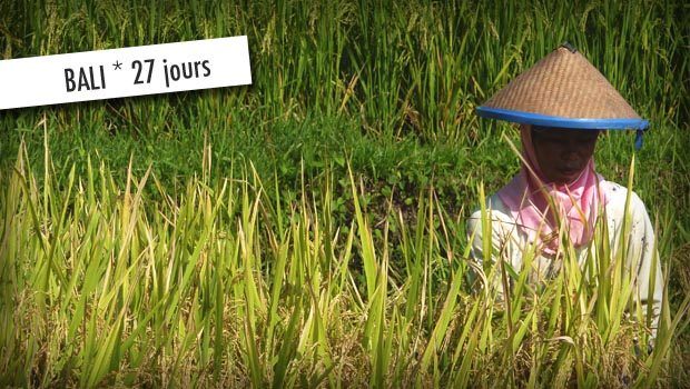 guide de voyage indonsie bali 27 jours fou