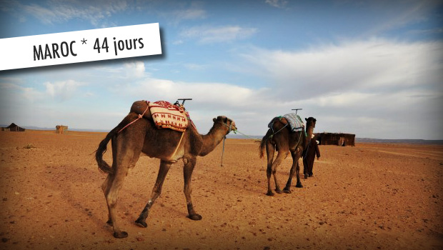 guide de voyage maroc 44 jours